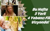 Bu hafta içerisinde 3 tanesi yerli olmak üzere 7 film gösterime girecek