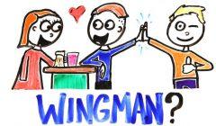 Kaderiniz Arkadaşınızın Elinde: Wingman